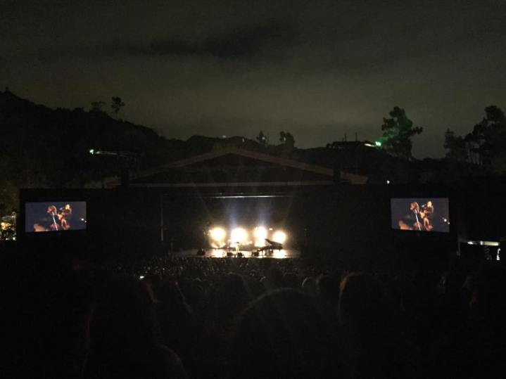 11117826 1630400980537676 1164922410 n Damien Rice Live at The Greek review: A lonely thunder