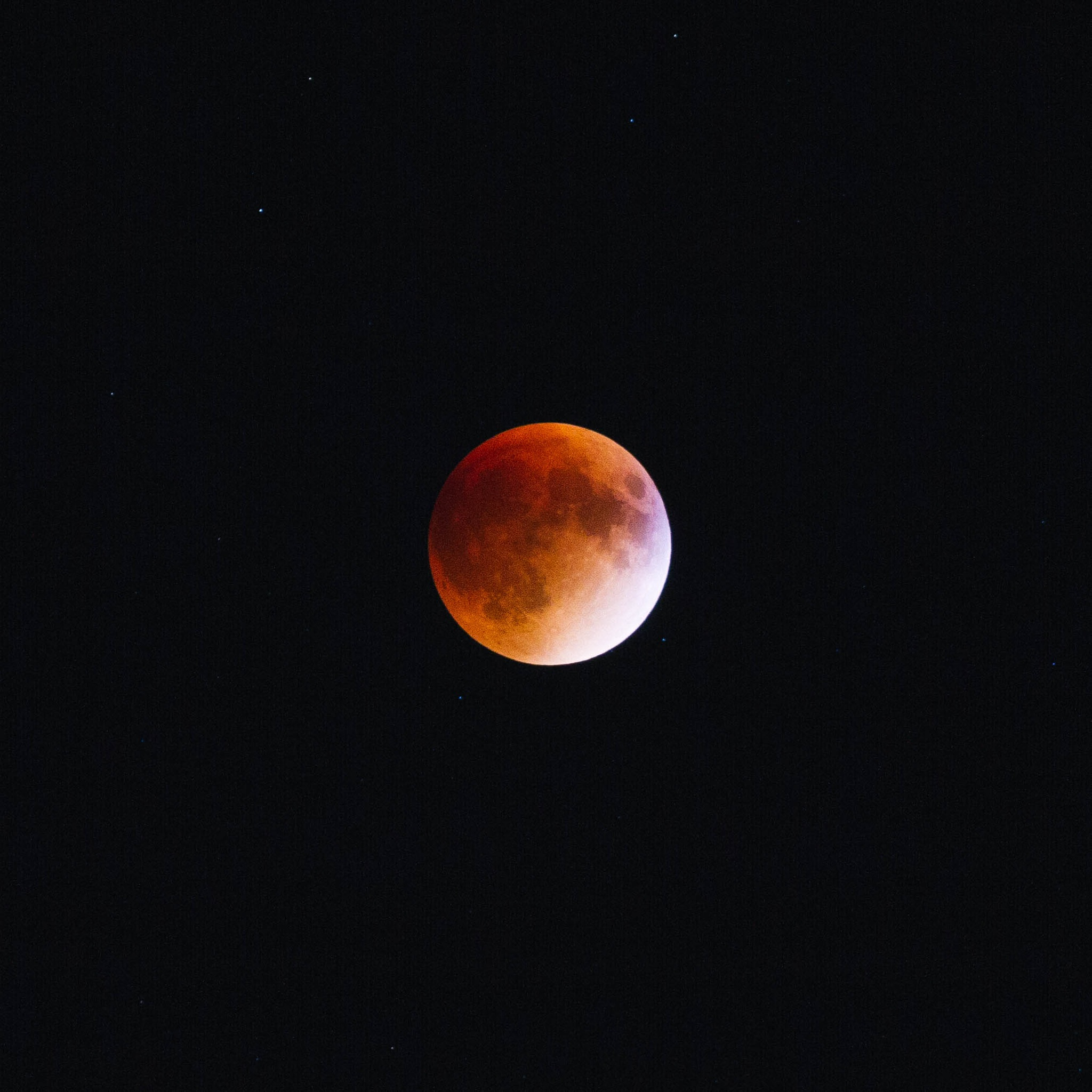 Must-See Blood Moon Photos From Across Israel