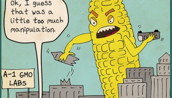 Can gmos be used to stop world hunger hs insider gmo publicscrutiny Choice Image
