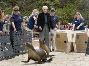 released animals courtesy of oc register