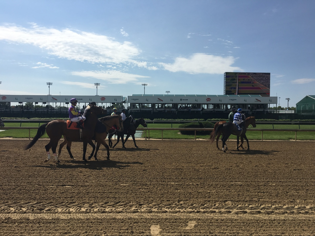 The horses trot to their posts before a big race.