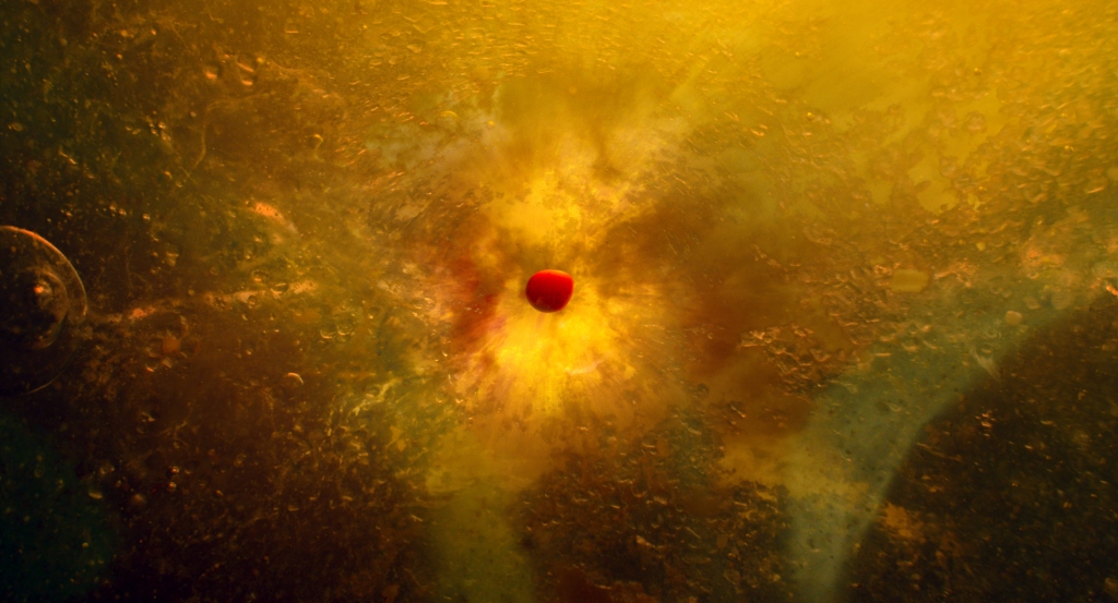 The filmmakers referenced laboratory footage and electron-microscopy to illustrate the beginnings of early life forms as depicted in the new IMAX® film Voyage of Time: The IMAX Experience®.