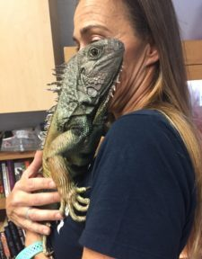 A lover of all amphibians and a FVHS teacher, Battig cuddles with her lovely Iguana.