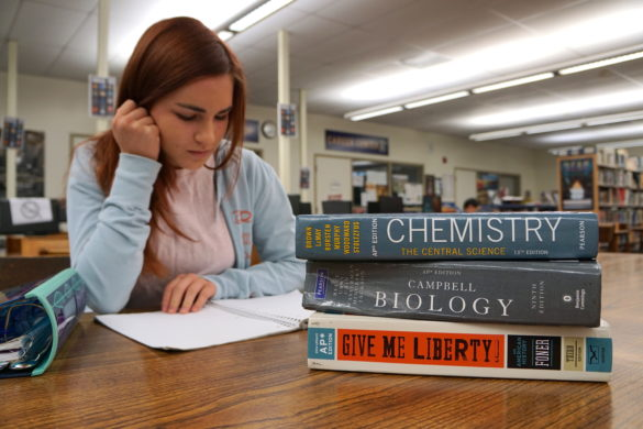 Taking AP classes has its pros and cons, but it all depends on your outlook. Photo illustration by Bethany Pham.