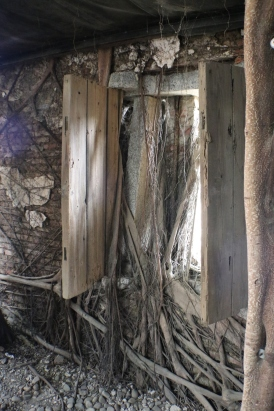 10 window Adventures in Tainan Tree House