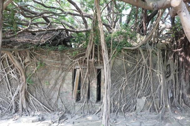 11 prison window Adventures in Tainan Tree House