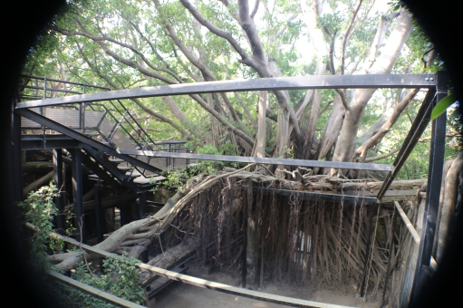 9 chow time Adventures in Tainan Tree House