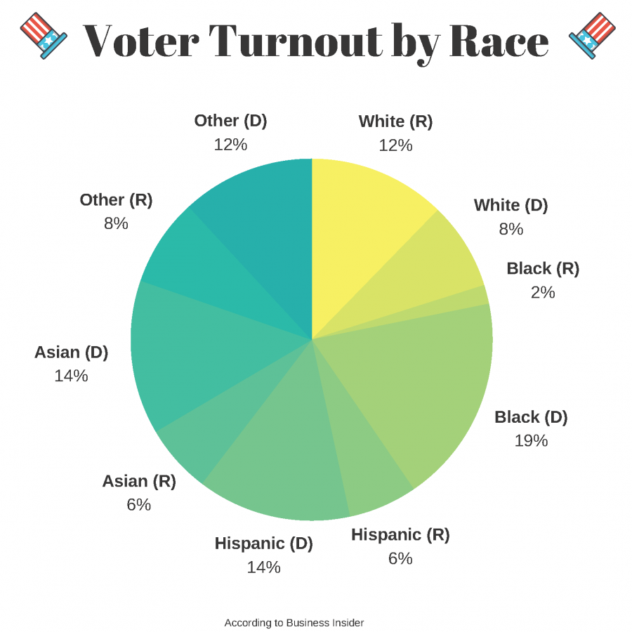 voter turnout by race 900x900 Minorities react to life in the Trump era