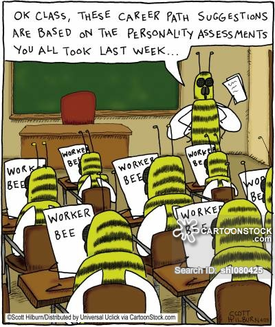 education teaching bee class teacher personality lecturer shl080425 low How about both?: Insight into the STEM vs. humanities debate