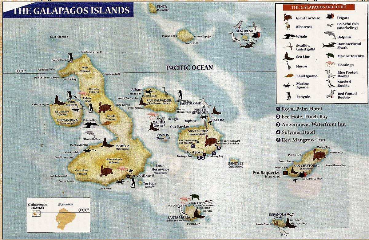 g animals map A unique island tour: The Galapagos