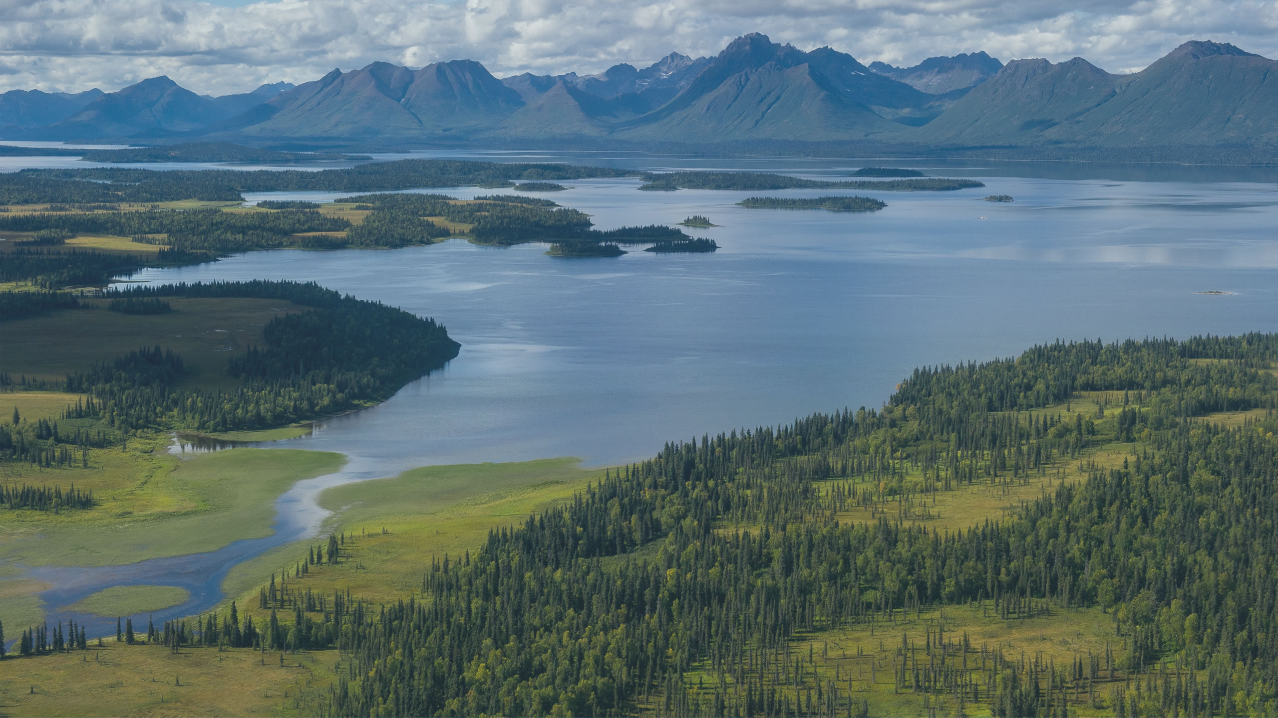 Bristol Bay Needs Our Voices - Blog