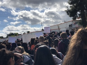 image attachment Students Protest Gun Violence in U.S. Schools in a #NationalSchoolWalkout