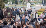 Students crowd in front of city hall as they protest. Photo by Suzane Jlelati.