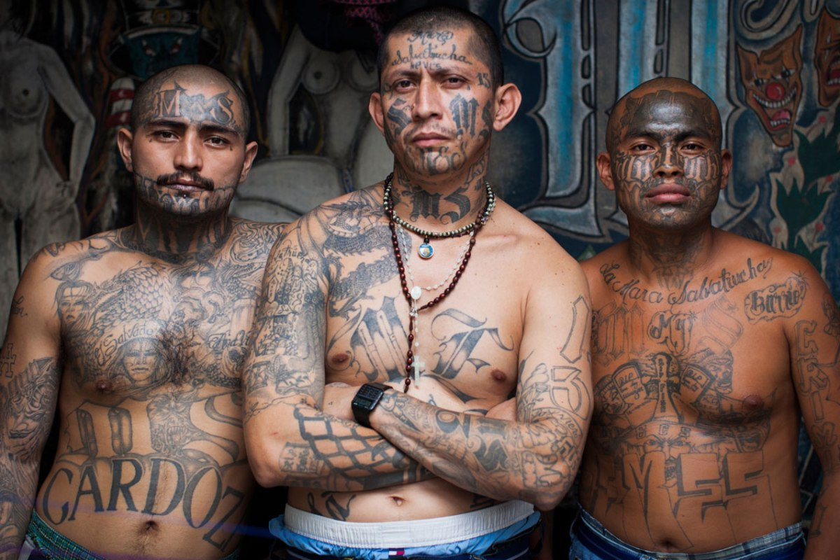 0202128 The Slippery Slope of Trumps Adjective to Describe International Killing Gang MS 13
