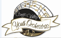 cvyo High School Instrumental performance opportunities