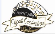 cvyo High School Instrumental performance opportunities