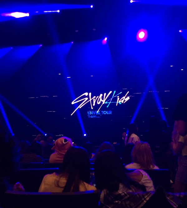 Waiting for Stray Kids