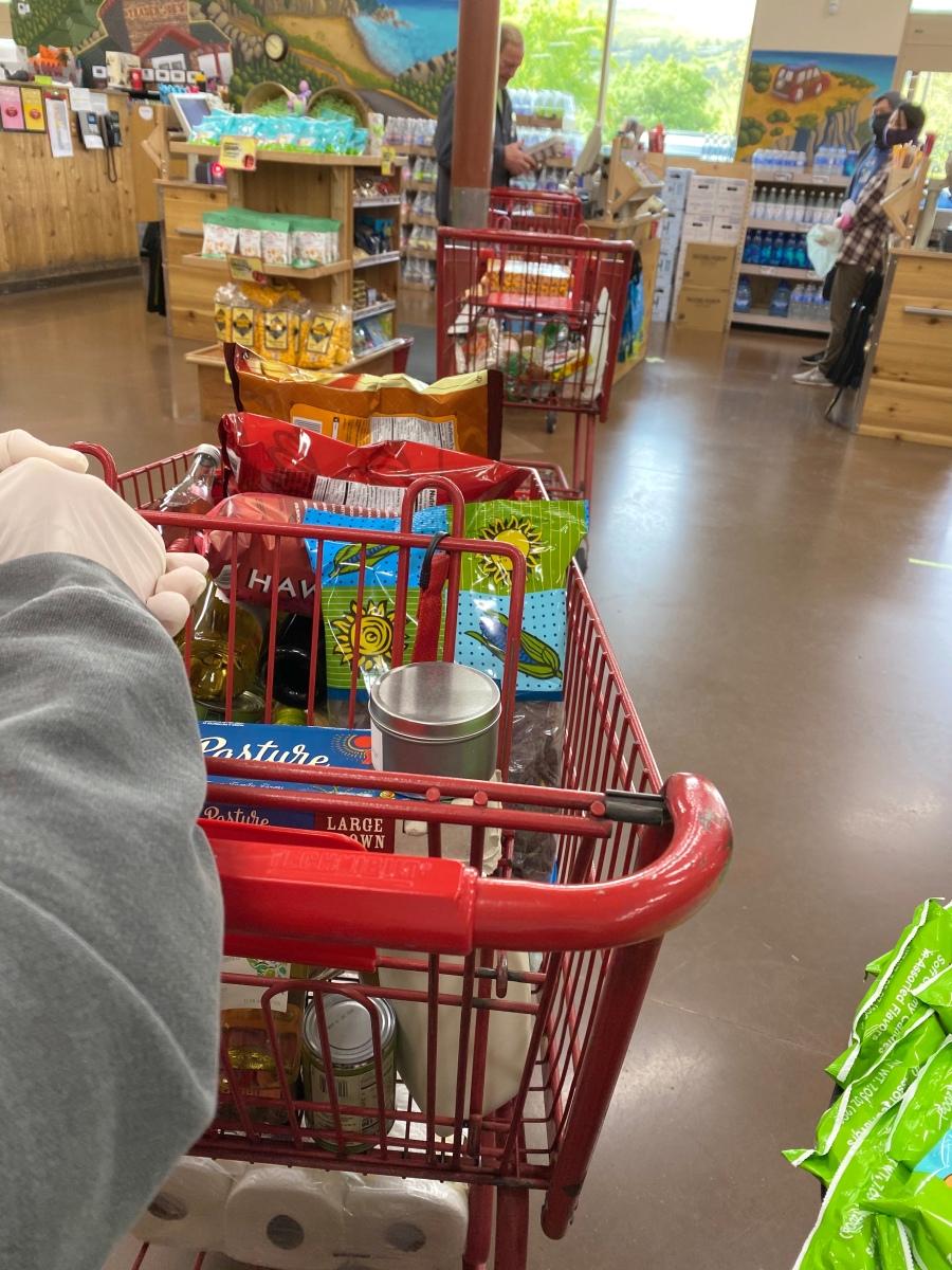 img 2404 cart